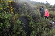 Трещина на склоне / Конго (бывш. Заир)