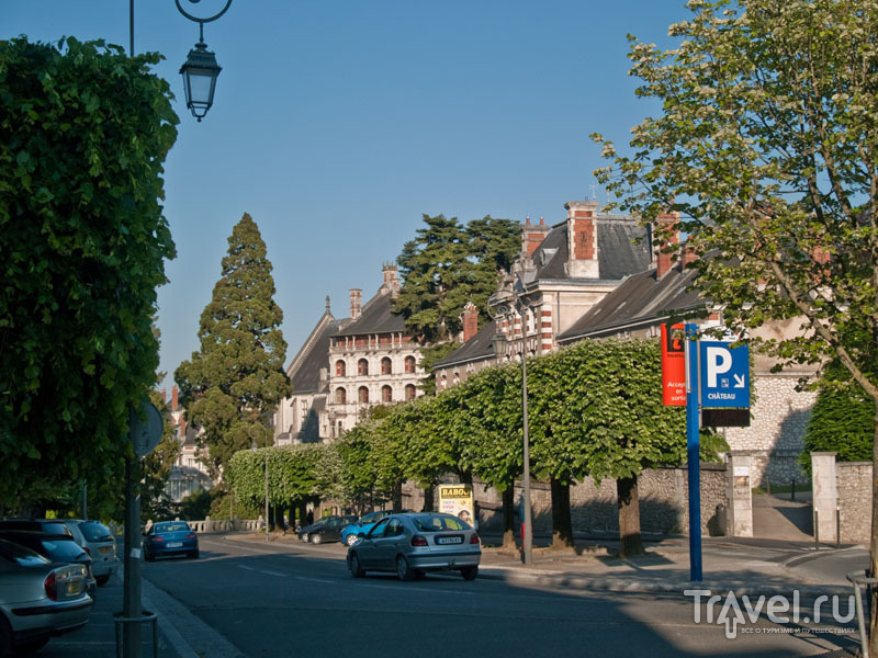 В Блуа много зелени / Фото из Франции