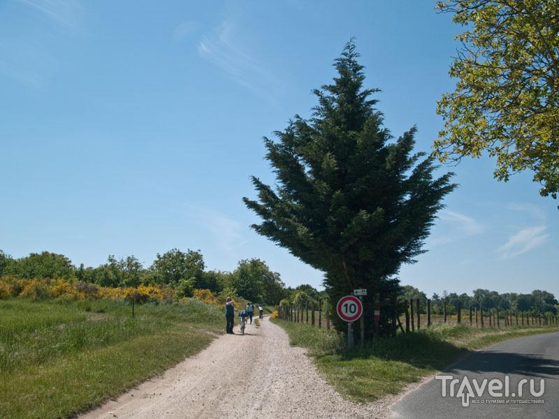 Гравийная велосипедная дорожка / Фото из Франции