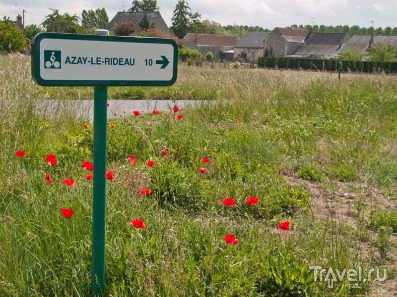 Указатель маршрута Loire a Velo / Фото из Франции