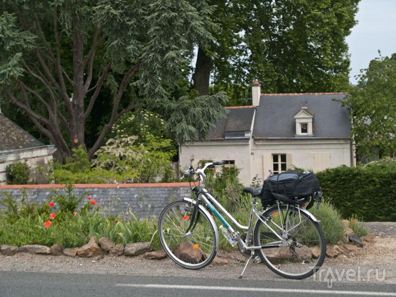 Рюкзак на багажнике велосипеда / Фото из Франции