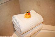 Утенок и полотенца / ОАЭ