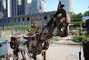 Портрет лошади / Аргентина