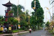 Символизируют дракона / Индонезия