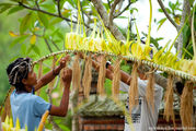 Изготовление пенджора / Индонезия