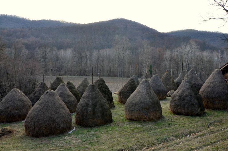 Сельские пейзажи Сербии / Фото из Сербии