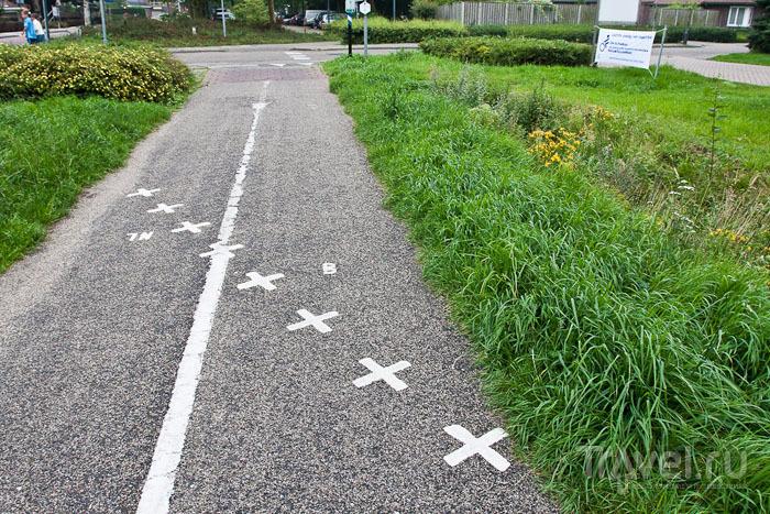 Велодорожка пересекает границу между Бельгией и Нидерландами / Фото из Бельгии