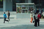 Цветочный ларек / Корея - КНДР