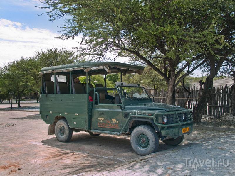 Открытый джип для поездок по парку Этоша / Фото из Намибии