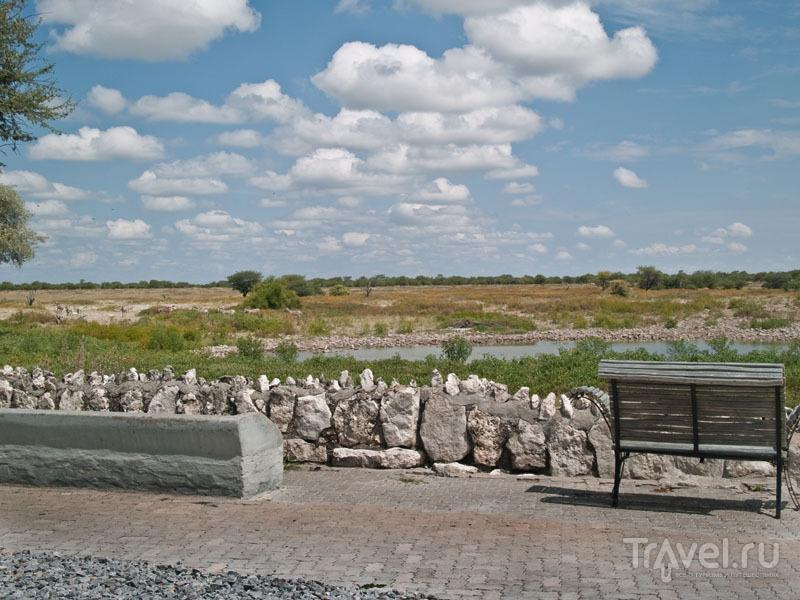 Терраса с видом на водопой, парк Этоша / Фото из Намибии