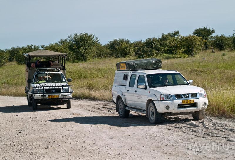 Сравните: открытый джип и частный автомобиль / Фото из Намибии