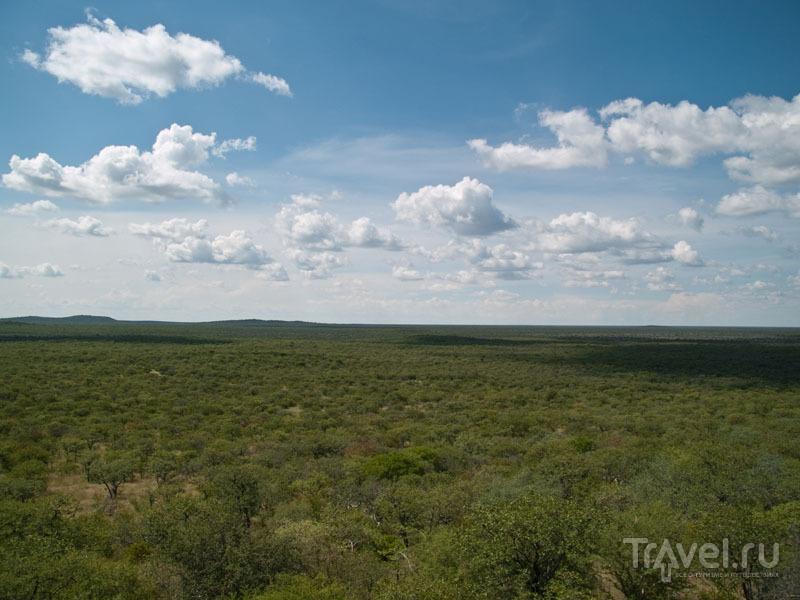 Вид на парк Этоша с террасы Etosha Lodge / Фото из Намибии