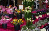 Продажа цветов / Швейцария