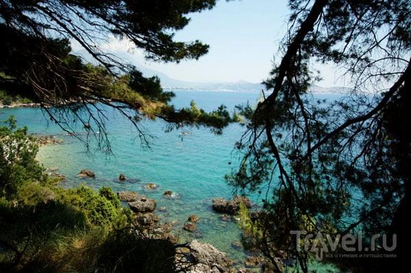 Побережье Адриатического моря / Фото из Хорватии