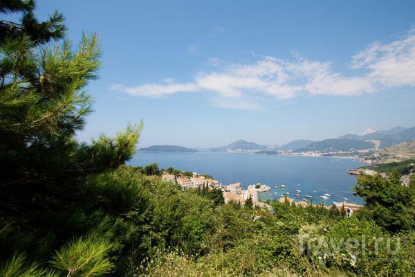Адриатическое побережье Черногории / Фото из Хорватии