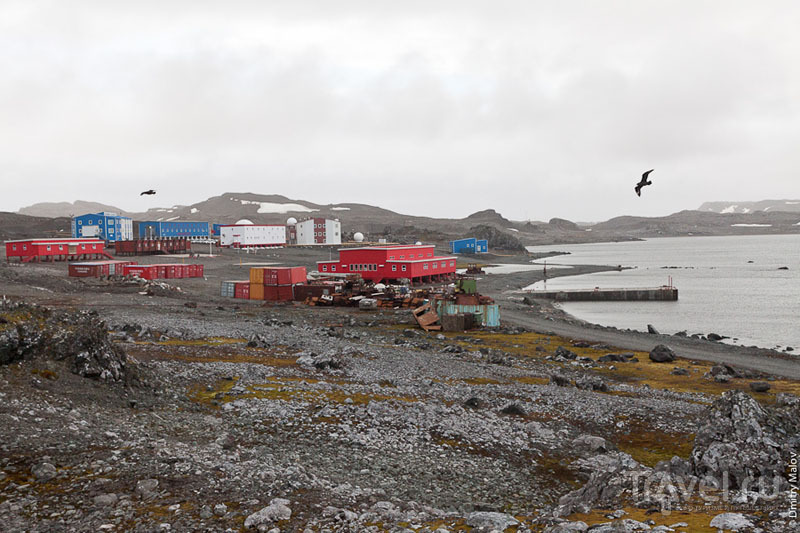 Китайская база в Антарктиде / Фото из Антарктики