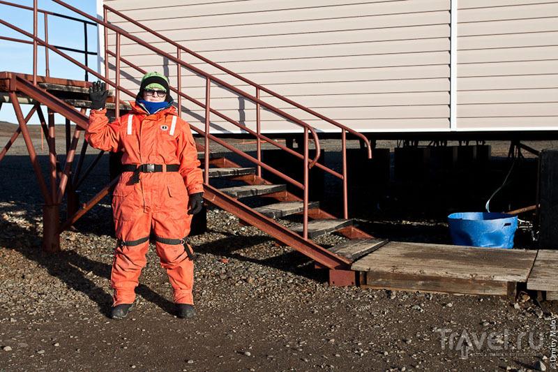 Одежда туриста в Антарктиде / Фото из Антарктики