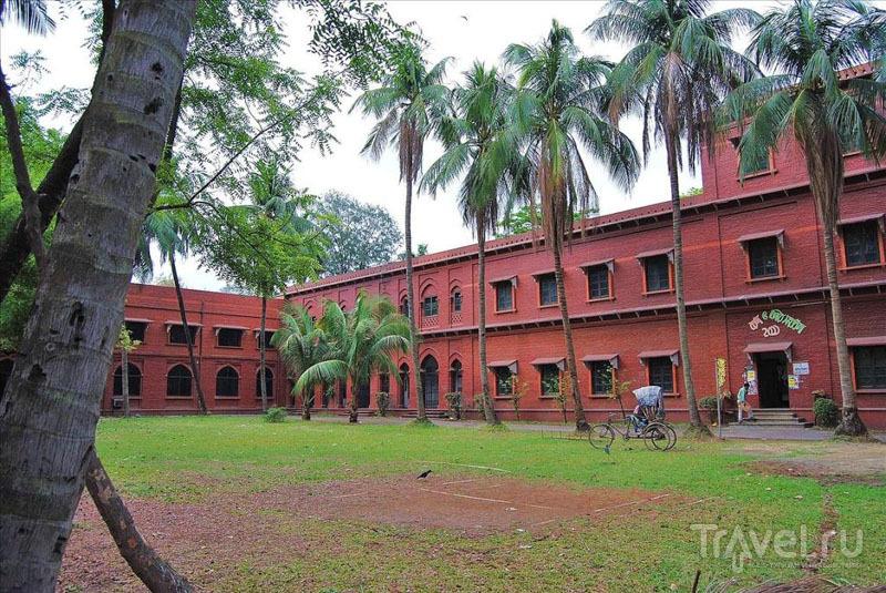 Кампус Государственного университета Дакки / Фото из Бангладеш