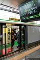 Двери на станциях / Южная Корея