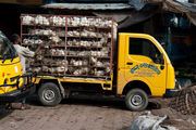 Перевозка птицы / Бангладеш