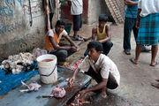 Бочка с кровью / Бангладеш