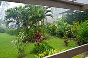 Приличный дождь / Фиджи