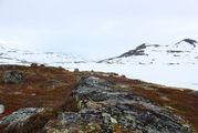 Оттаявший участок / Норвегия