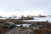 Местами буквы стерты / Норвегия
