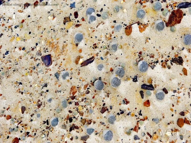 Округлые формы из песчаника на острове Чампа / Россия