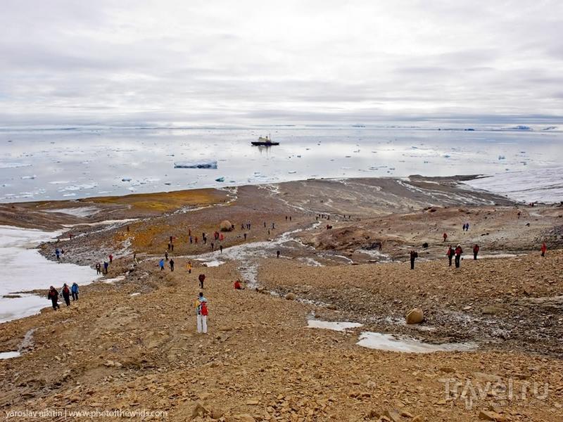 Ландшафты острова Чампа в архипелаге Франца-Иосифа / Россия