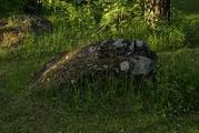 В лесу / Финляндия