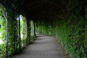 The Crown Prince Garden / Австрия