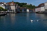 Лебеди на реке / Швейцария