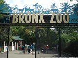 Зоопарк Бронкса / США