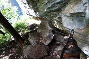 Cпуск по лесу вдоль скалы / Швейцария