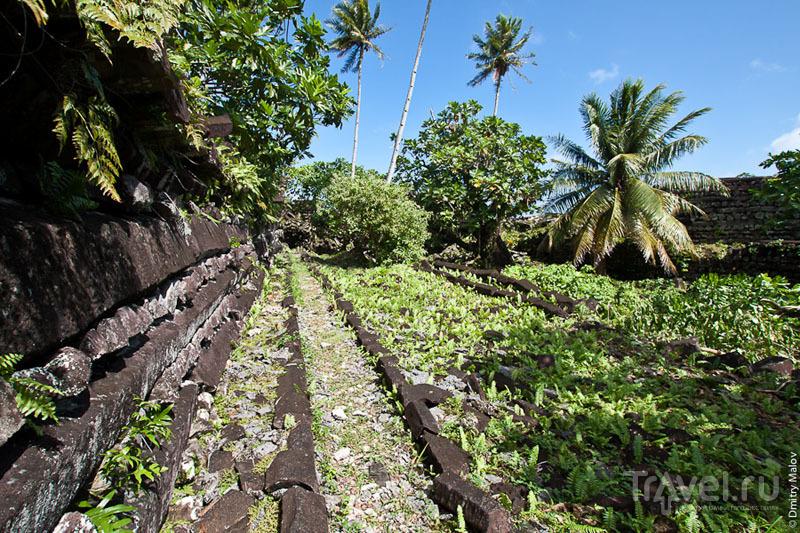 Каменная стена города Нан-Мадол, Микронезия / Фото из Микронезии