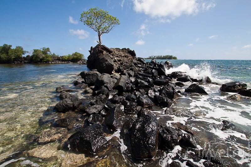 Волнолом на острове Понпеи, Микронезия / Фото из Микронезии