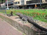 Вараны / Нидерланды