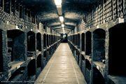 Хранилище старого вина / Украина