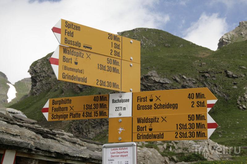 Указатель в горах Швейцарии / Фото из Швейцарии