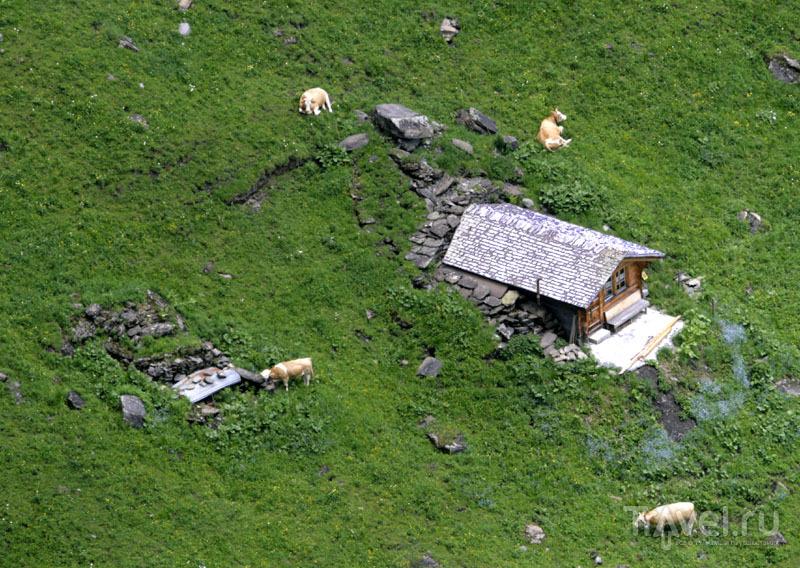 Дома в горах Швейцарии / Фото из Швейцарии