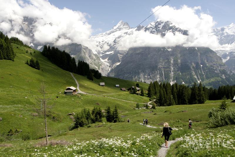 Пейзаж швейцарских гор / Фото из Швейцарии
