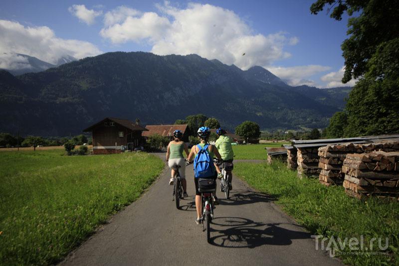 Велосипедисты в Швейцарии / Фото из Швейцарии