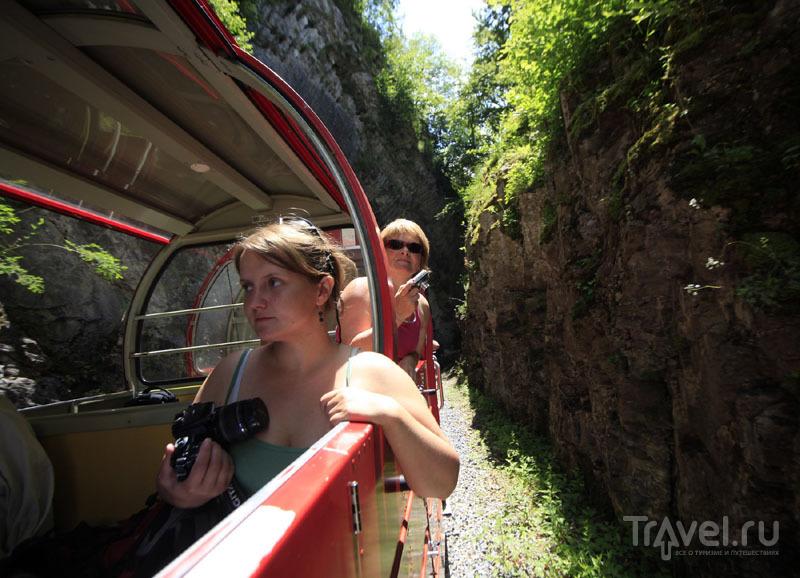 Путешествие по зубчатой железной дороге в Швейцарии / Фото из Швейцарии