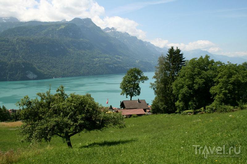 Типичный швейцарский пейзаж / Фото из Швейцарии