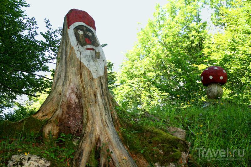 Артобъект в Швейцарии / Фото из Швейцарии