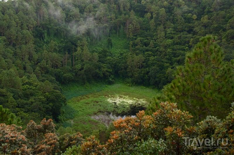 Кратер потухшего вулкана вблизи Кюрпипа, Маврикий / Фото с Маврикия