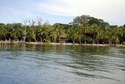 Побережье Бокас-дель-Торро / Панама