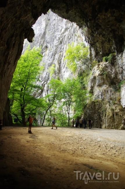 Выход из пещеры / Словения