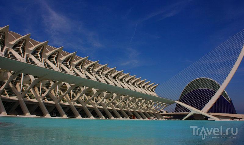 Город искусства и науки в Валенсии, Испания / Фото из Испании